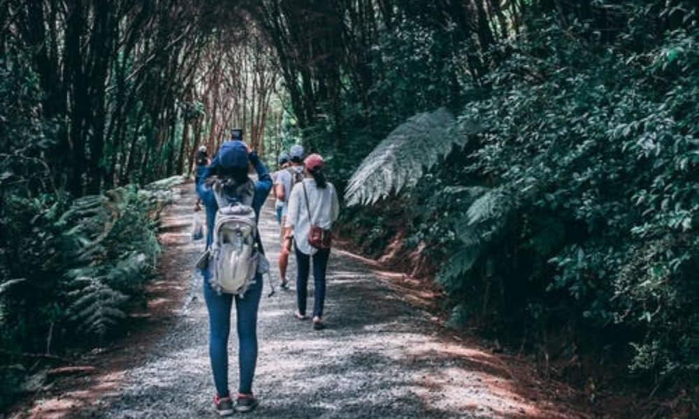 Planes para el fin de semana en Colombia