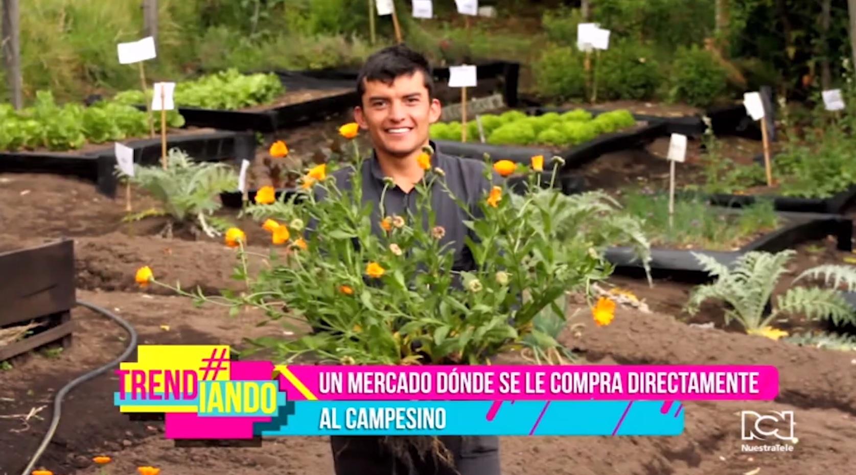 Jóvenes colombianos fundan un merado organico para conectar al campo con los consumidores