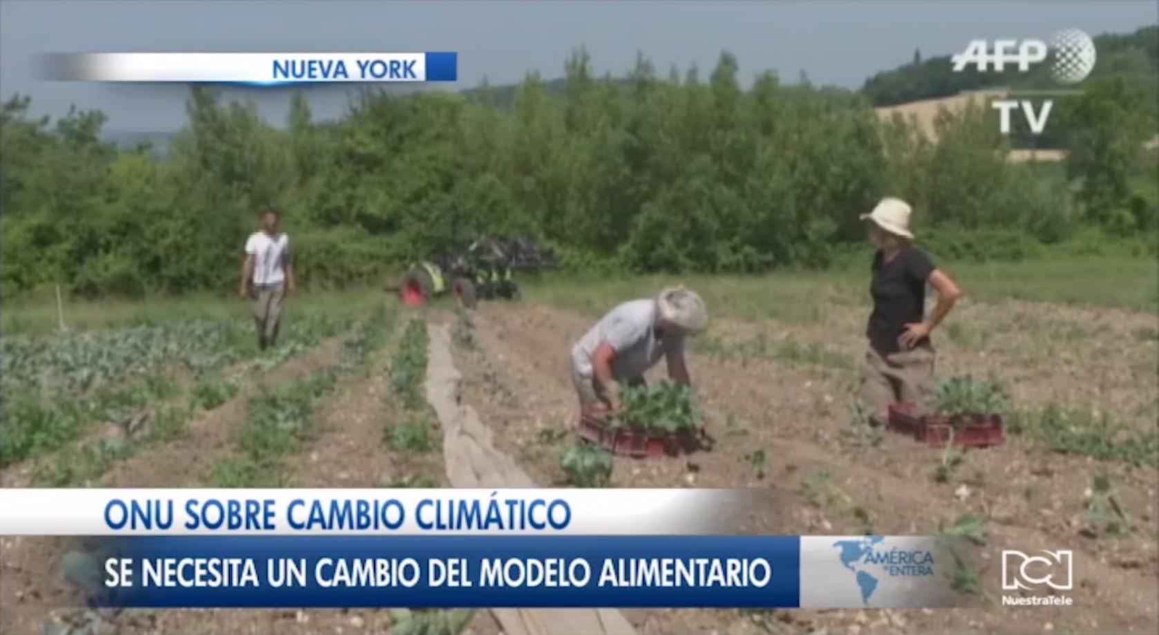 ONU publica nuevo informe sobre el cambio climático