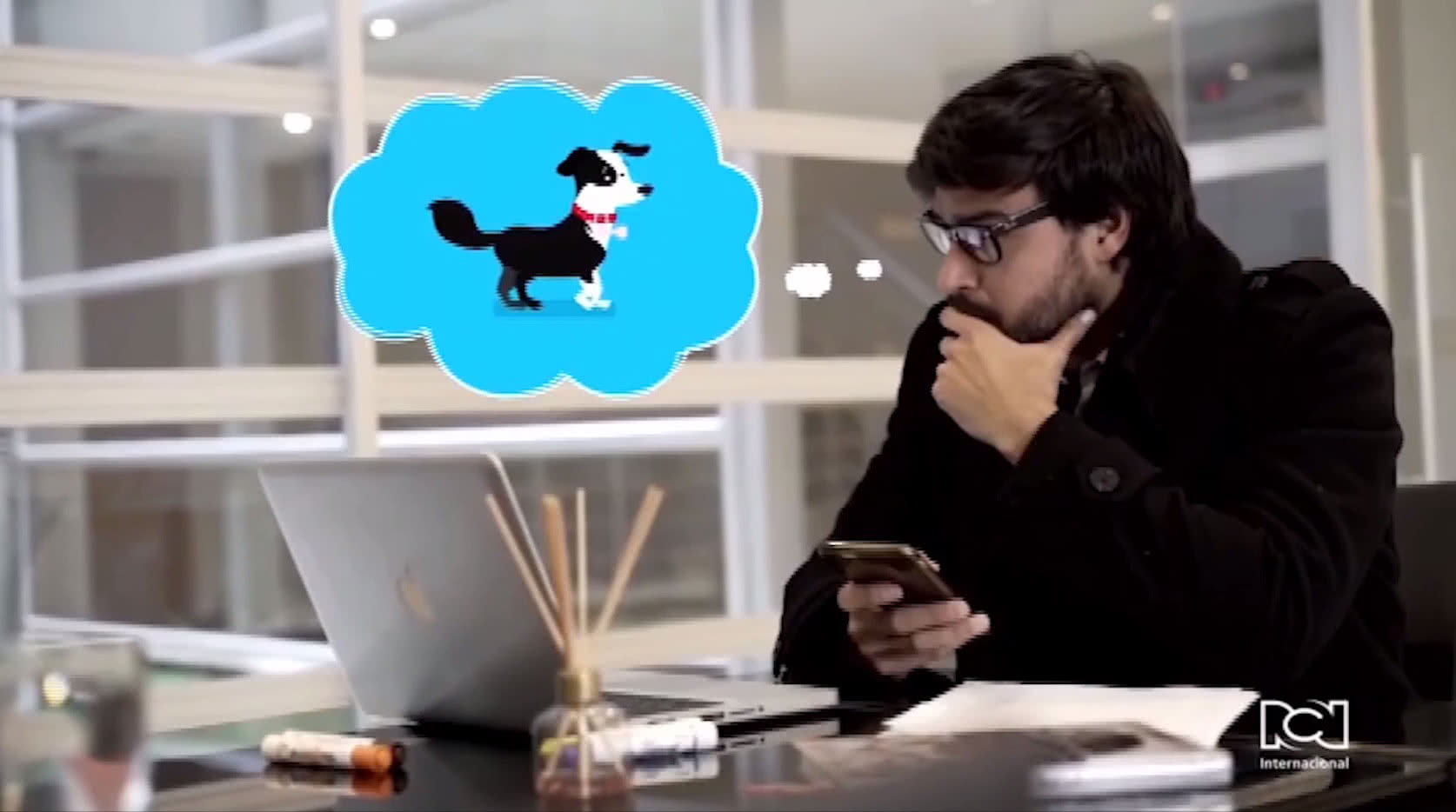 Petcrew, el Airbnb para mascotas