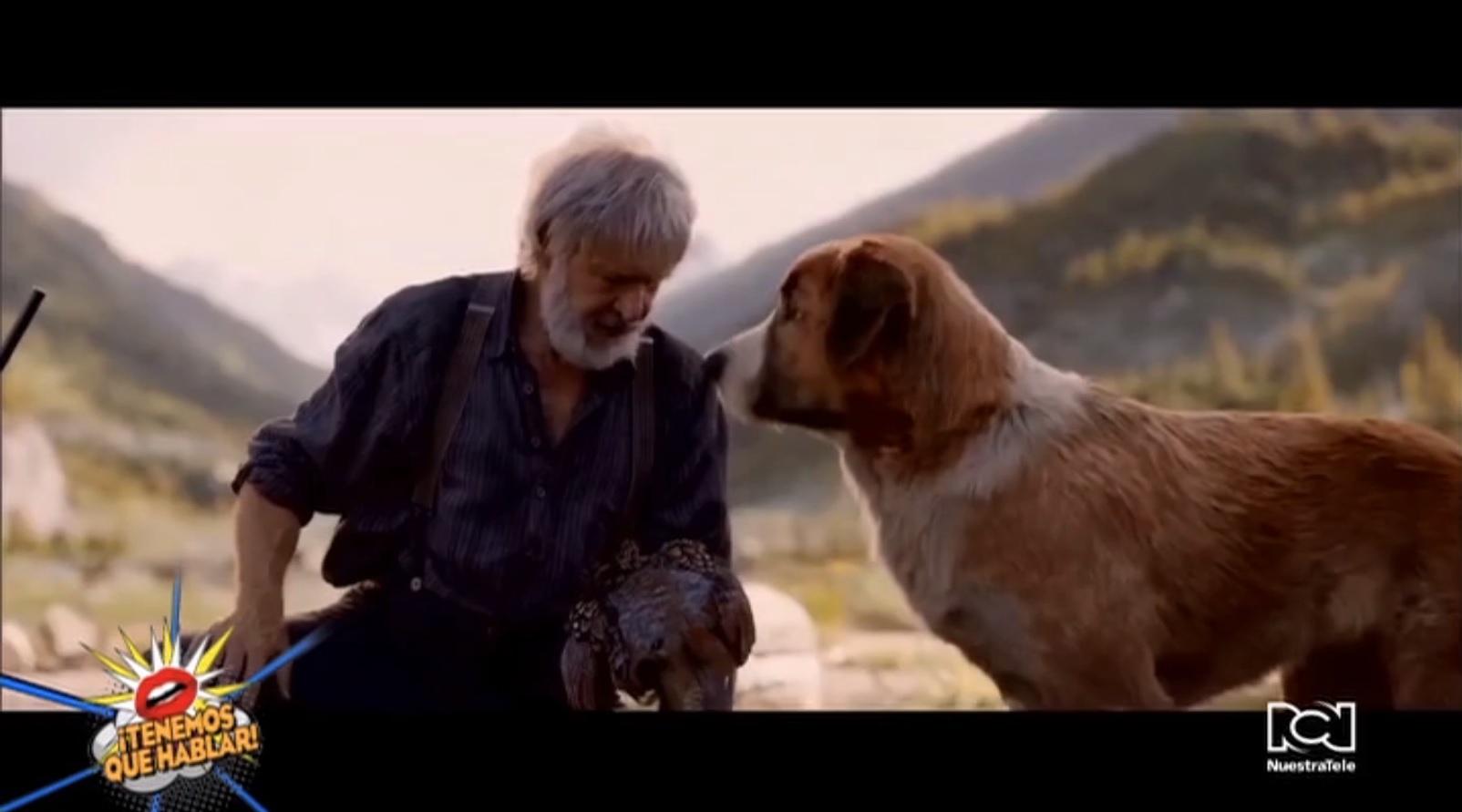 Harrison Ford confesó su relación de amor con los perros