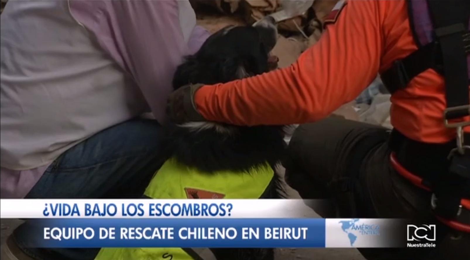 ¿Hay vida bajo los escombros en Beirut?