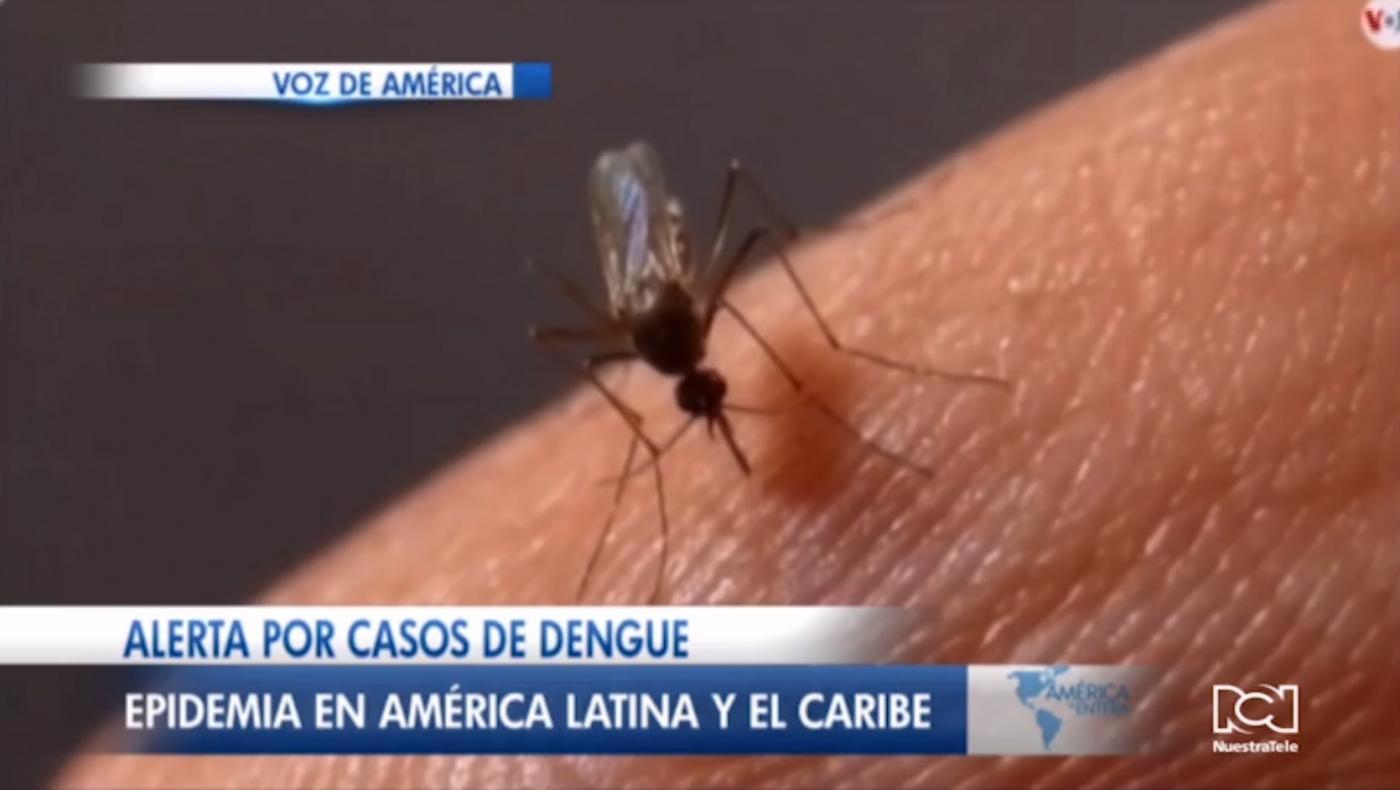 Alerta por epidemia de dengue en Latinoamérica y el Caribe