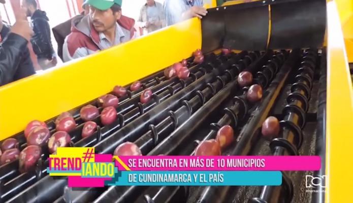 Máquina lavadora de papas revoluciona la industria agrícola en Colombia