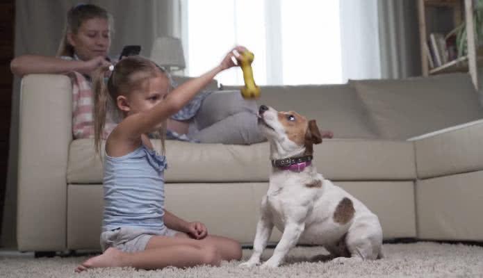 Amor de Perros: Conoce los beneficios de tener un perro en casa para el desarrollo de los niños