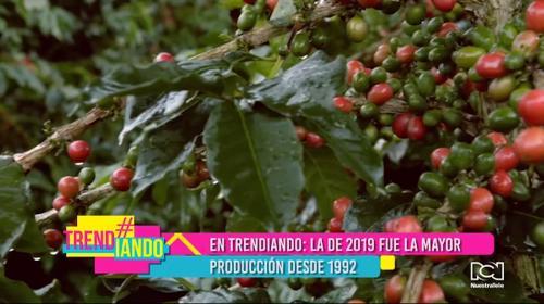 Colombia rompió el récord de producción de café en 2019