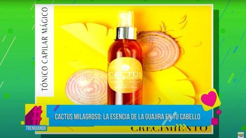 Cactus milagroso: Conoce las bondades de la sabia del cactus para el cuidado de tu cabello