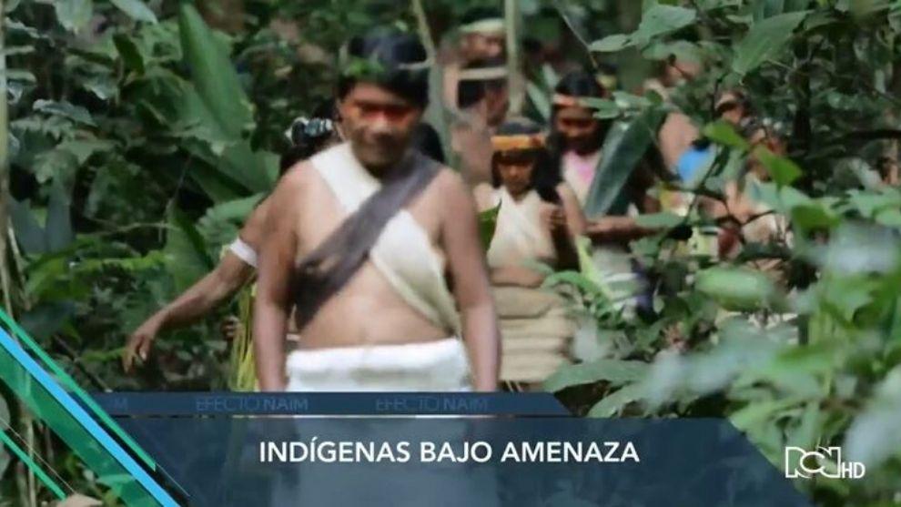 Efecto Naím | Capítulo 17 | Indígenas bajo amenaza