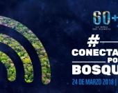 Foto: conectadosporlosbosques.com