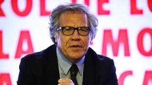 Luis Almagro, secretario general de la Organización de Estados Americanos (OEA). Foto: AFP