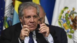 Luis Almagro, secretario general de la OEA. - Pedro Pardo / AFP