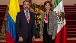Luis Videgaray, canciller de México y su homóloga colombiana María Ángela Holguín. Foto: Oficial