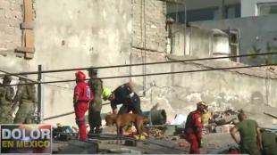 Brigadas de socorristas trabajan en la remoción de escombros. Foto:Captura de vídeo NoticiasRCN