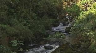 Así se llega al nacimiento del río Magdalena
