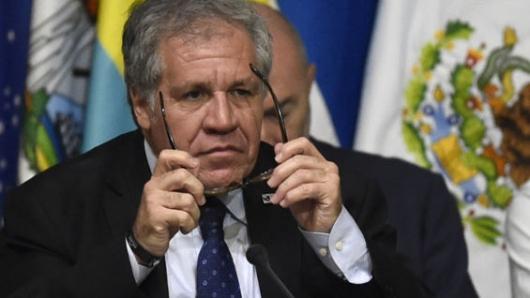 Denunciaron a rectoras del CNE ante Fiscalia