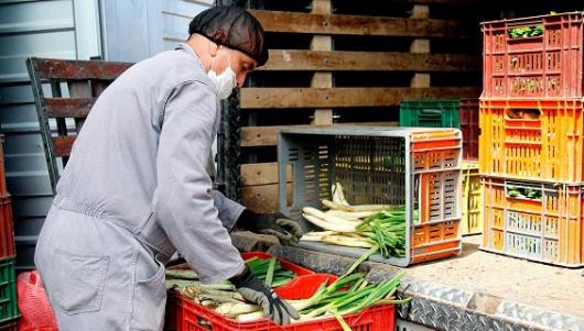 Desempleo en Colombia subió al 9,2%, según el Dane