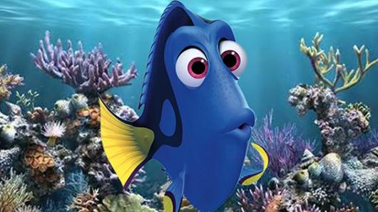 Pixar quiere repetir el xito de 39 buscando a nemo 39 con - Image doris nemo ...