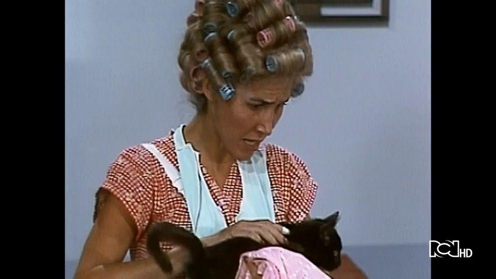 Doña Florinda recibe un gato del profesor Jirafales