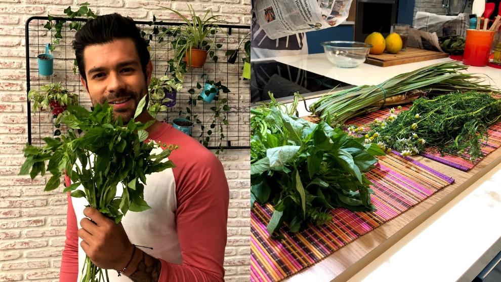 Receta: remedios caseros con hierbas aromáticas