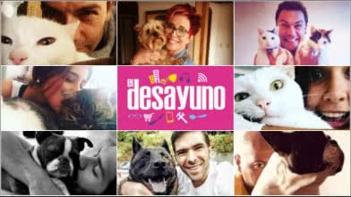 Las mascotas de los presentadores de El Desayuno