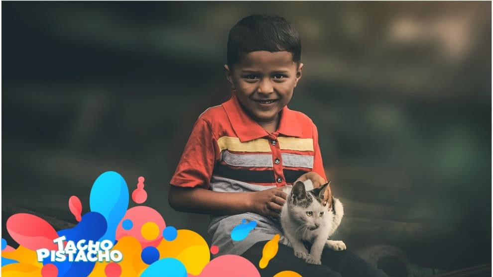 Tacho Pistacho - Quiero adoptar una mascota