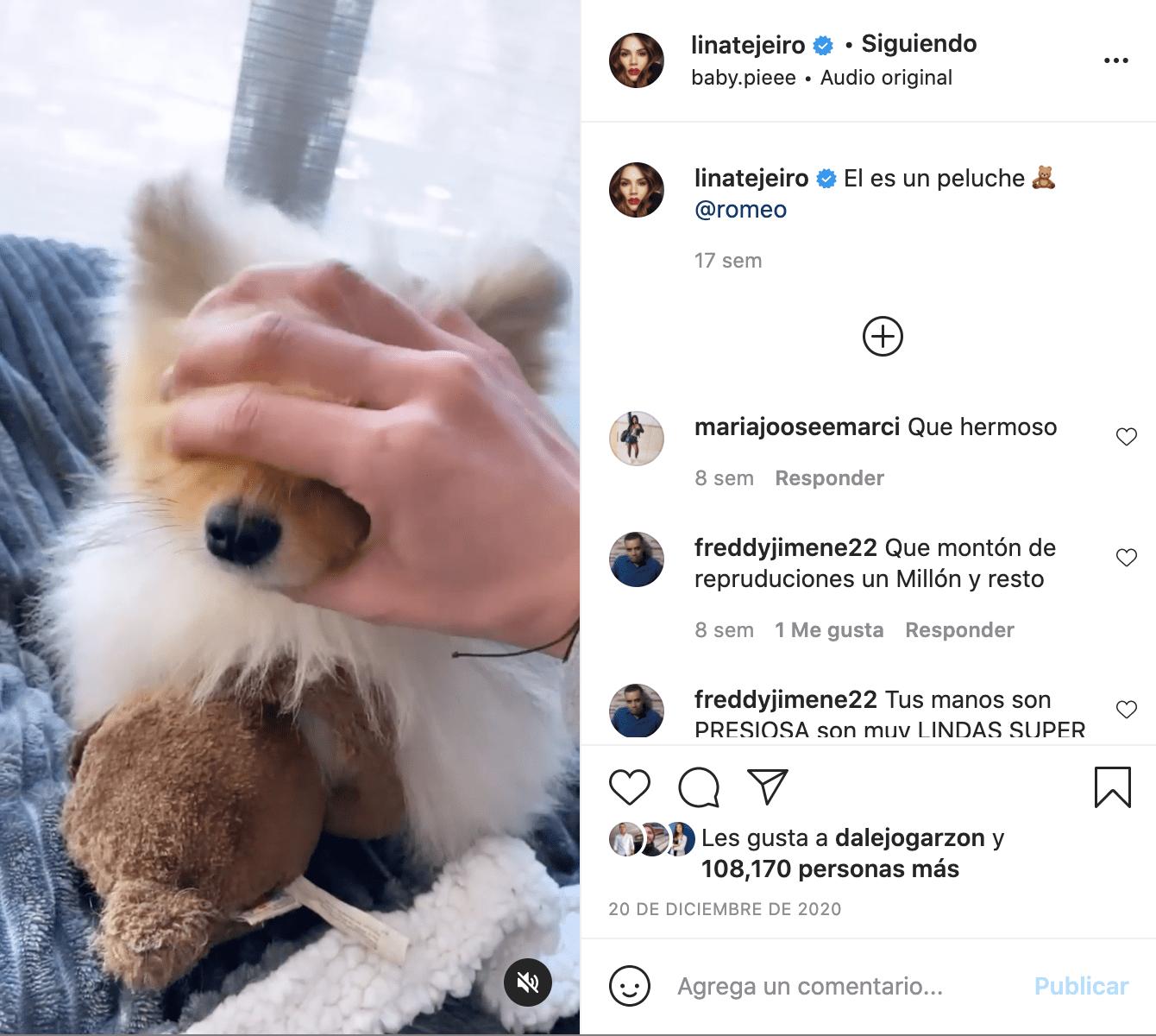 Lina Tejeiro mascotas